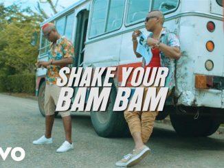 RDX – Shake Your Bam Bam