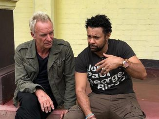 Sting-and-Shaggy-pic-800x561