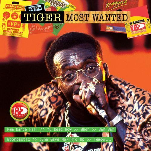Tiger - You Dead Now: listen with lyrics | Deezer